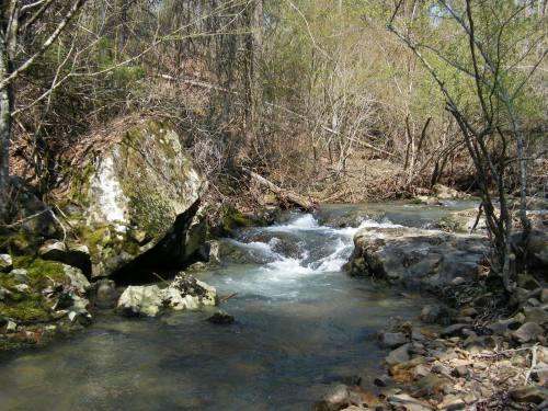 Bedrock step; boulder